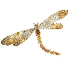Large Natural Fancy Color Diamond Gold Dragonfly Brooch