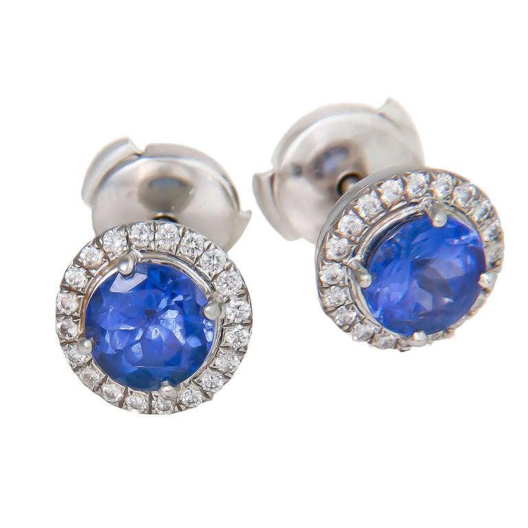 Tiffany Soleste Platinum Tanzanite Earrings For