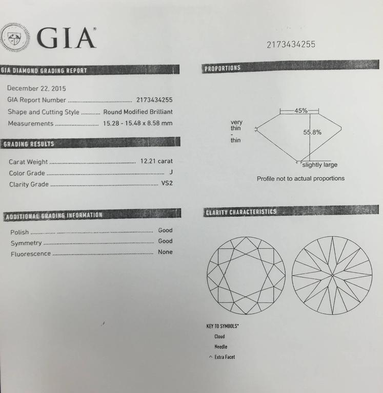 Bulgari 12.21 Carat GIA Cert Diamond Platinum Ring  5