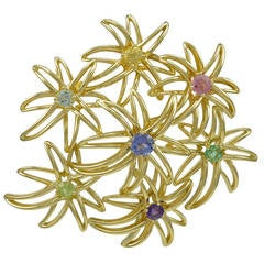 Tiffany & Co. Fireworks Gem Set Gold Brooch