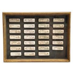 19th Century Set of Torah (Hebrew) Markers Framed in Giltwood Frame-Judicah