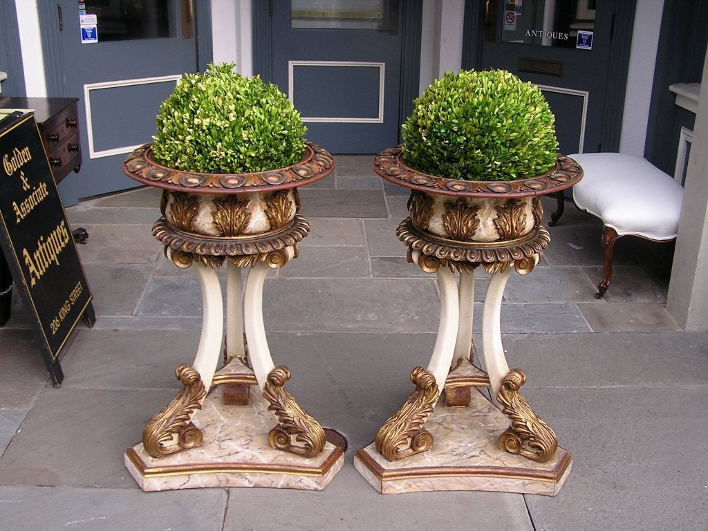 Pair of Italian carved wood hand painted and gilt garden planters with decorated egg dart borders, acanthus leaf motif,  and terminating on scrolled legs with acanthus feet and triangular base. Last Quarter 19th Century.