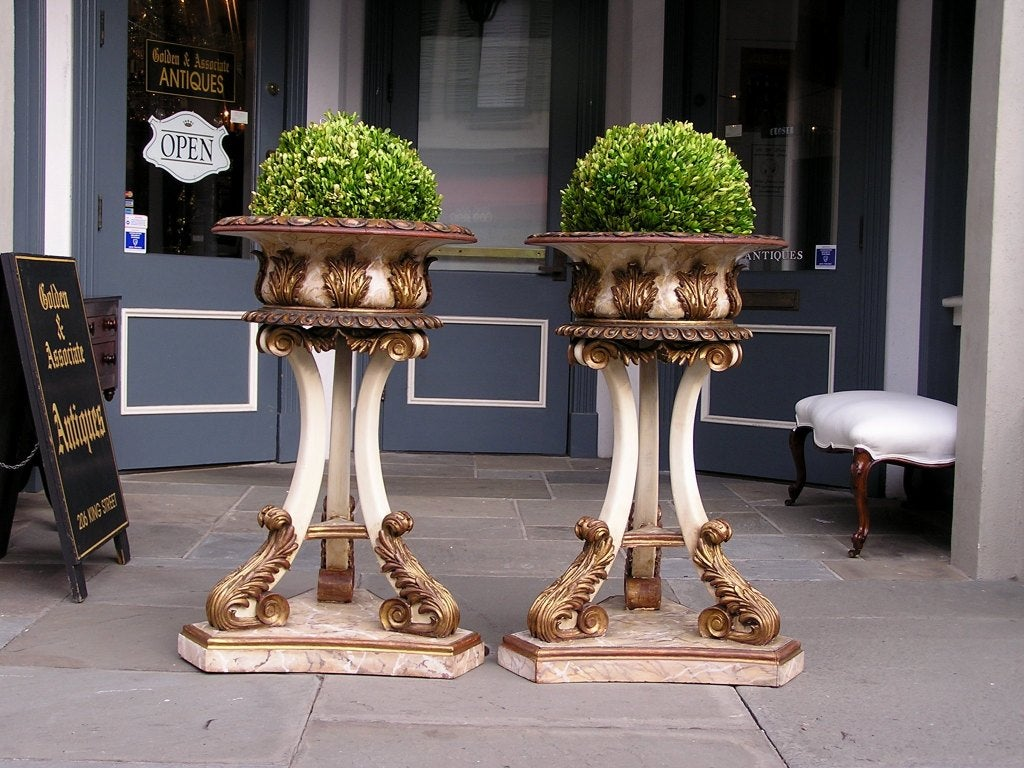 Neoclassical Pair of Italian Carved Wood Hand Painted and Gilt Garden Planters, Circa 1870 For Sale