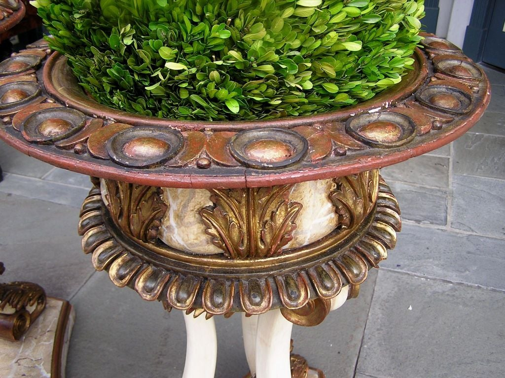 Pair of Italian Carved Wood Hand Painted and Gilt Garden Planters, Circa 1870 For Sale 1