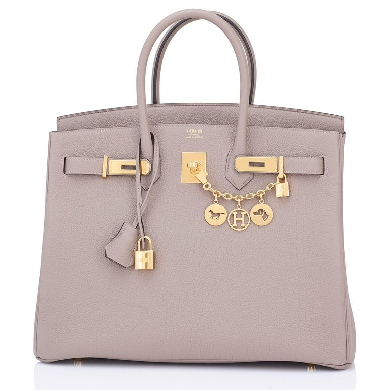 Hermes 35 Gris Asphalte Dove Grey Togo Gold Hardware C Stamp Birkin Bag 2