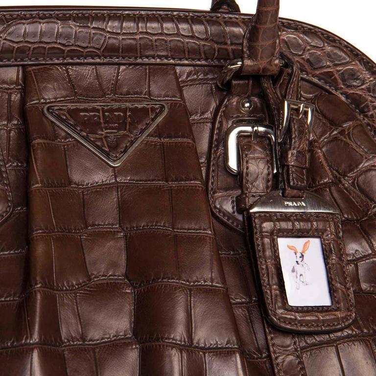 Women's Prada Brown Crocodile Large Frame Bag