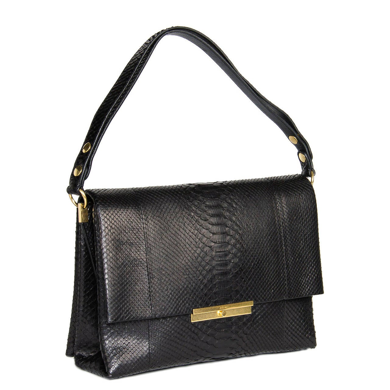 Celine Black Snake Skin Bag 2