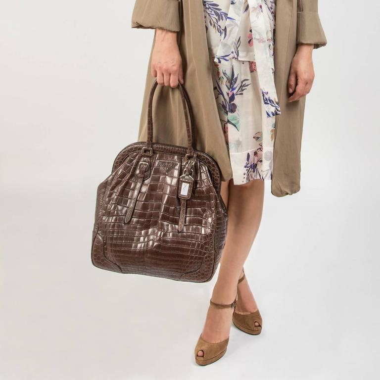 Prada Brown Crocodile Large Frame Bag 1