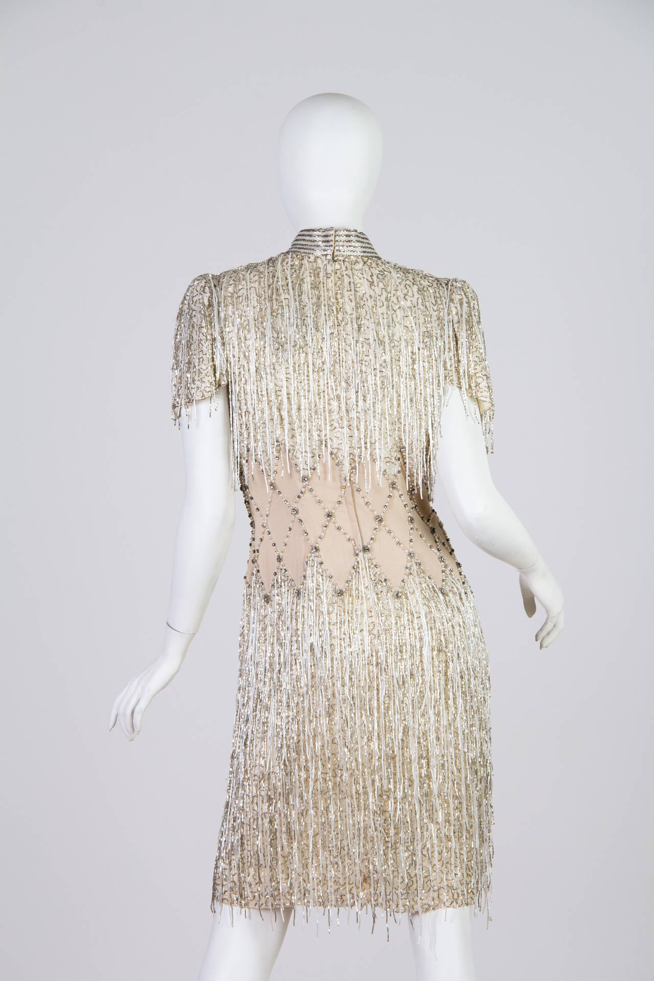 Spectacular Beaded Fringe Dress 4