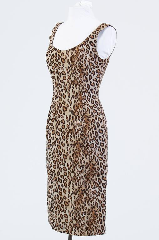 Alexander McQueen Leopard Silk Dress 3