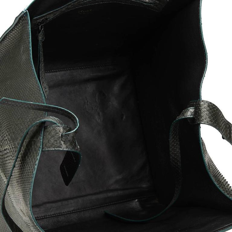 2012 Céline Evergreen Python Medium Phantom Luggage Tote 5
