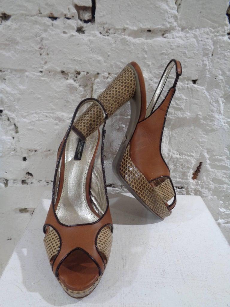 Dolce & Gabbana brown python skin sandals 2