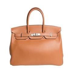 Hermes Swift Palladium Leather Birkin