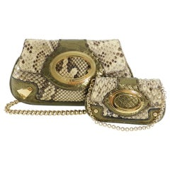 Dolce & Gabbana Bronze Python Micro Mini Bag and Coin Pouch Set