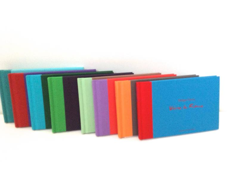 Hermes Book Set - Philippe Dumas - Rare For Sale 2