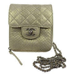 Chanel Python Iridescent Evening Wallet on Chain WOC Crossbody Shoulder Flap Bag