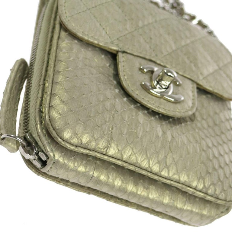 Gray Chanel Python Iridescent Evening Wallet on Chain WOC Crossbody Shoulder Flap Bag For Sale