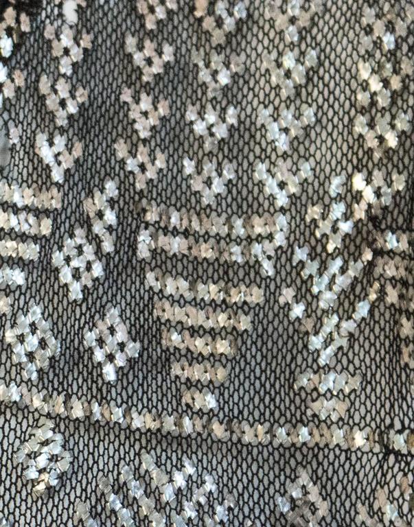 20s Art Deco Sterling Silver Assuit and Silk Velvet Dress 3