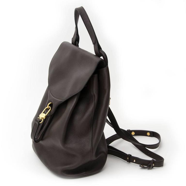 Brown backpack by Delvaux with golden hardware and a leather top handle. There's an extra compartment on the back which closes with a zipper. The shoulder straps are adjustable and therefore easy to wear. The interior is made out of suede.