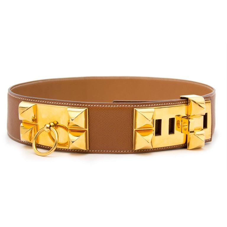 Hermes Brown Collier De Chien Belt  5