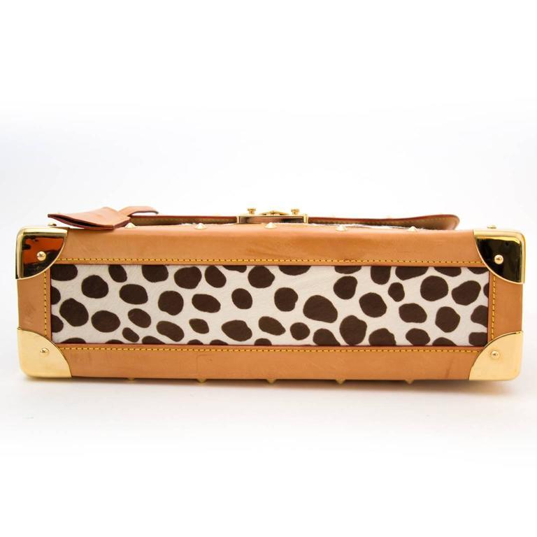 Louis Vuitton Dalmatian Sac Rabat Pony Hair Monogram Bag 5