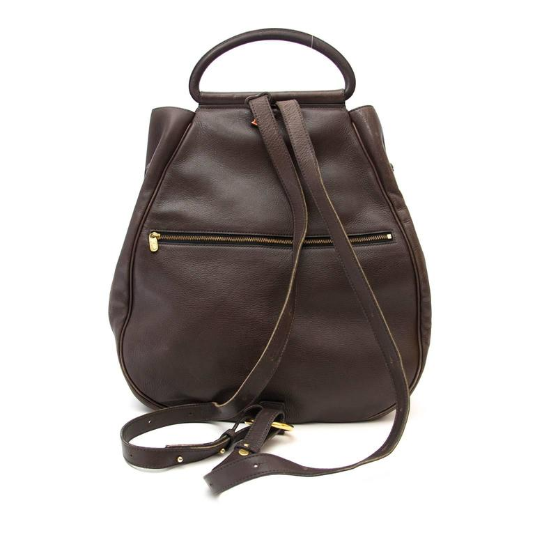 Delvaux Brown Cerceau GM Backpack 2