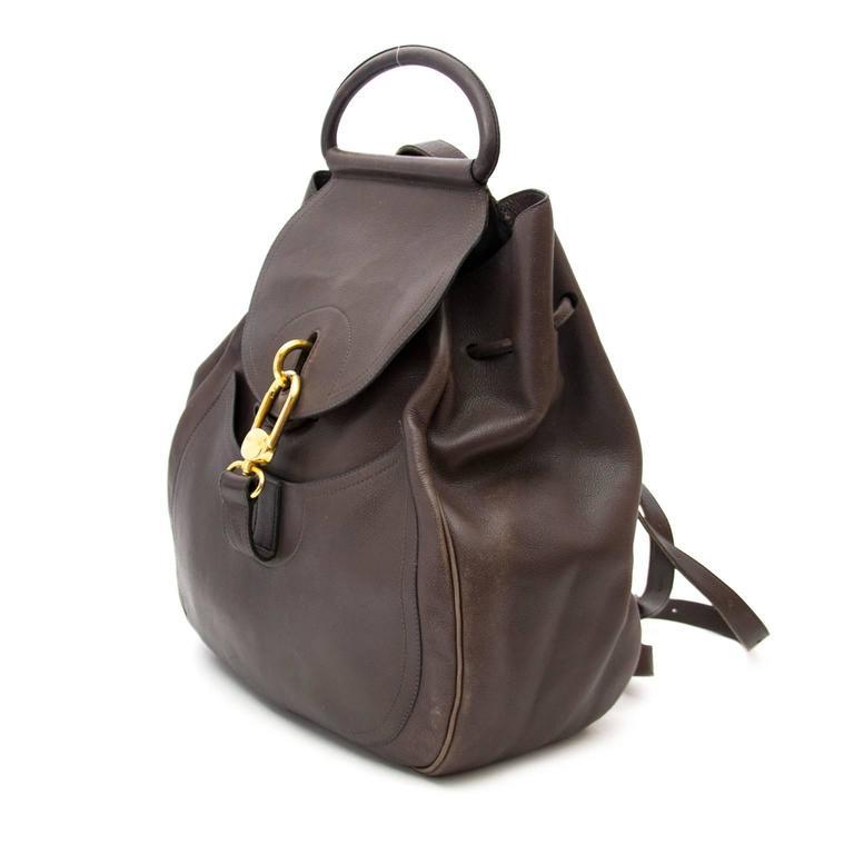 Delvaux Brown Cerceau GM Backpack 4