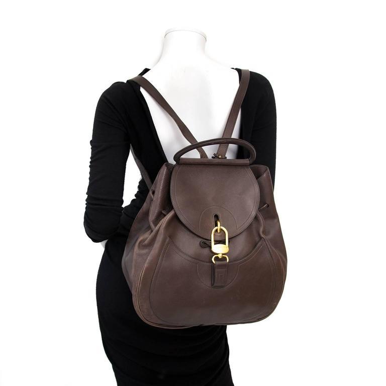 Delvaux Brown Cerceau GM Backpack 5