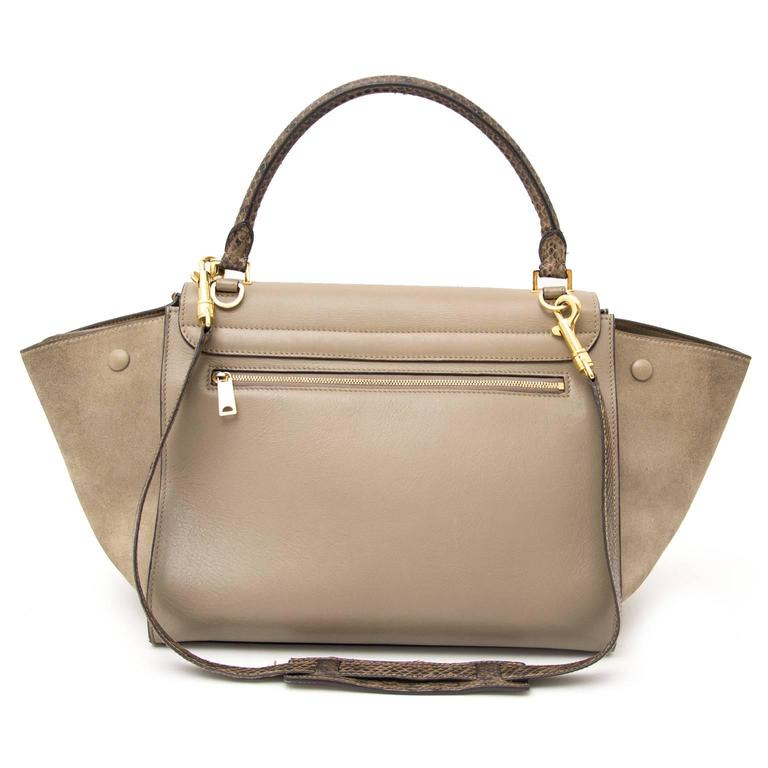 Céline Medium Calf Leather Suede Whipsnake Taupe Trapeze Shoulder Bag 2