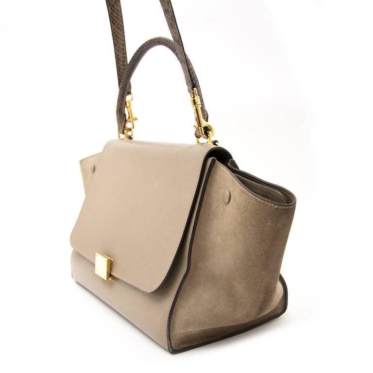 Céline Medium Calf Leather Suede Whipsnake Taupe Trapeze Shoulder Bag 4