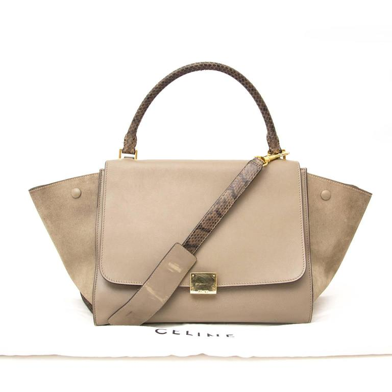Céline Medium Calf Leather Suede Whipsnake Taupe Trapeze Shoulder Bag 5
