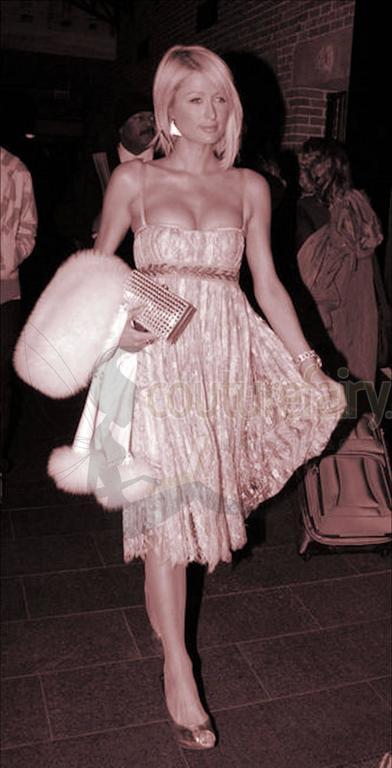 Stunning Dolce & Gabbana Black French Lace Laurel Dress 9