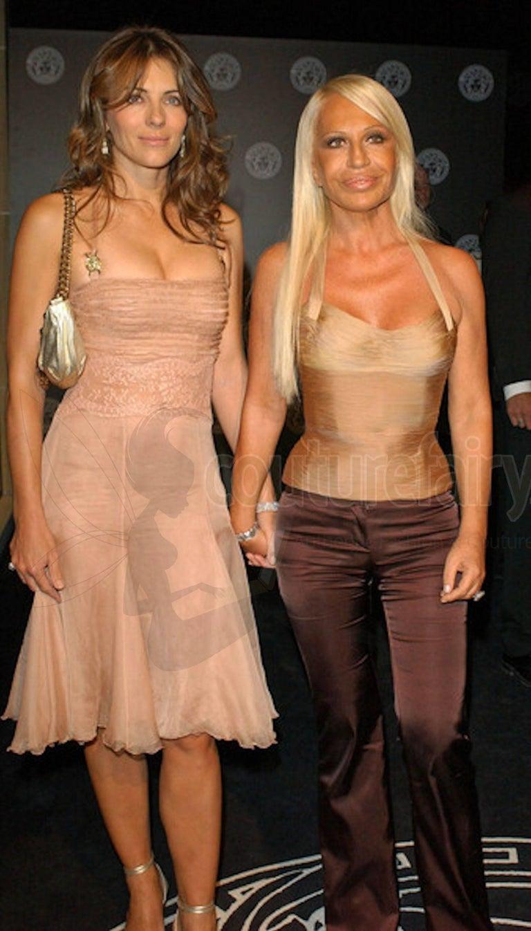 Stunning Versace Blush Nude Medusa Lace & Silk Corset Dress For Sale 4