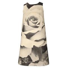 Rose Poster Dress