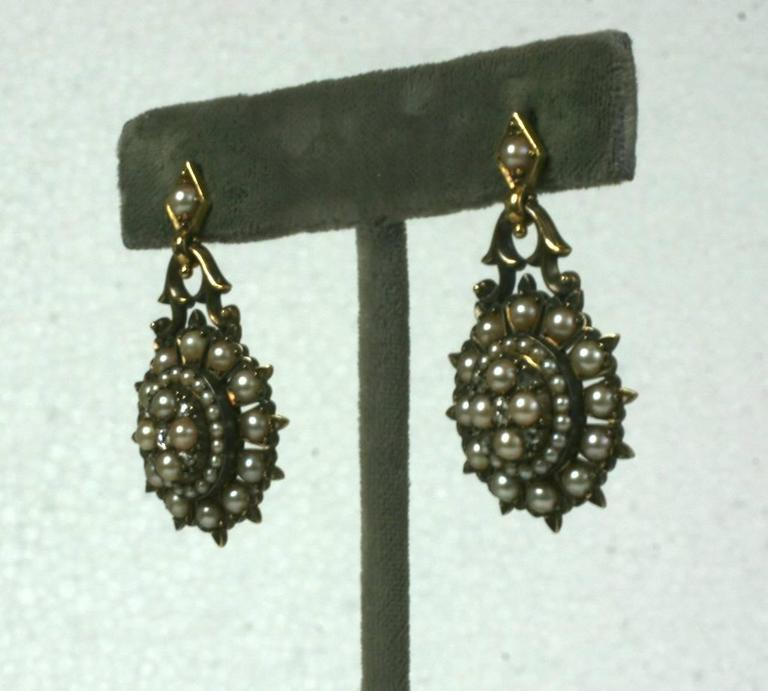 Elegant Victorian Seed Pearl Earrings 2