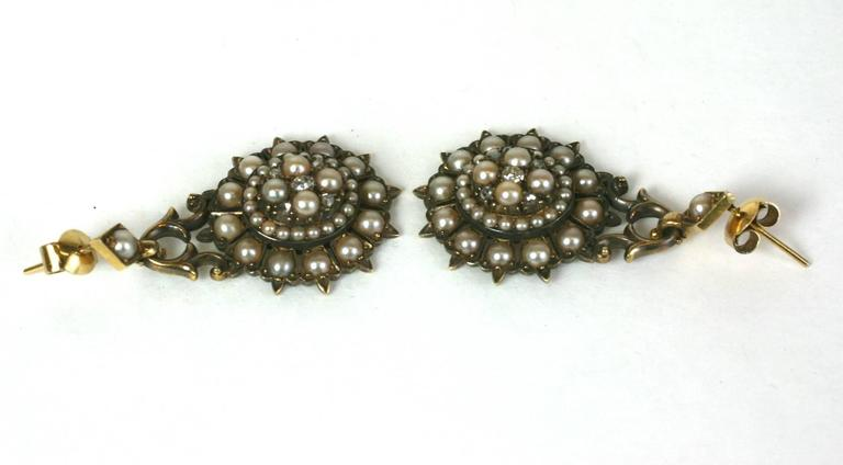 Elegant Victorian Seed Pearl Earrings 5