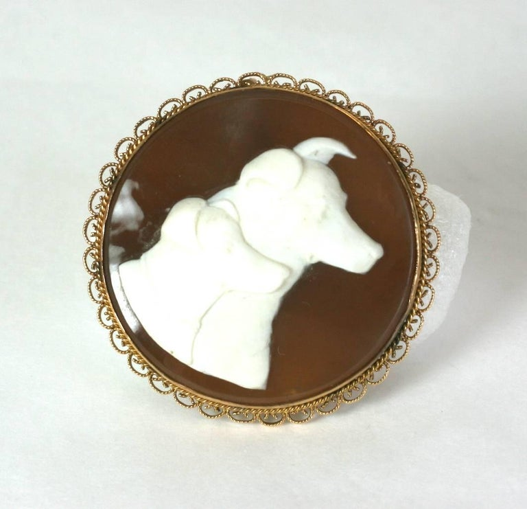 Charming and super unusual hand carved dog, shell cameo suite from the 1930's. Wonderful subject matter shows a pair of hounds carved into the shell brooch and matching earrings.  Beautiful and finely detailed carving, all set in filigree 14k