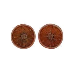 Casty Orange Slice Earclips