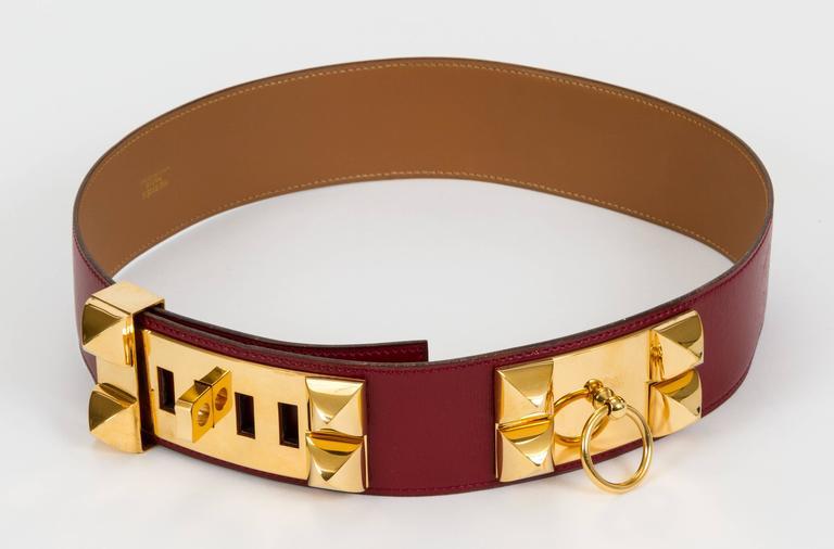Hermès Collier de Chien Rouge H 70cm Belt 2