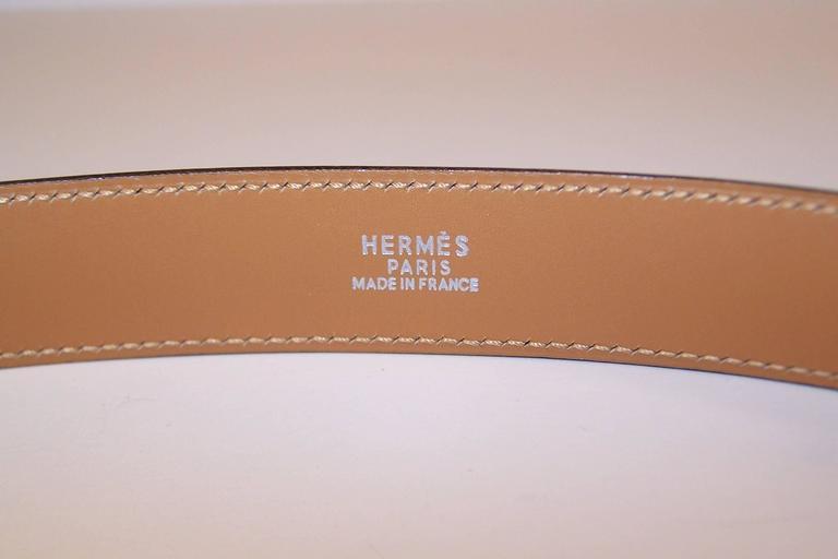2001 Hermes Sterling Silver Touareg Collier De Chien Belt 3