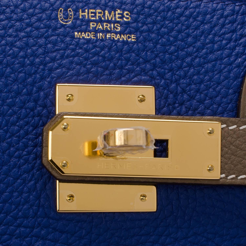 Hermes 25 Birkin Blue Electric Togo Phw