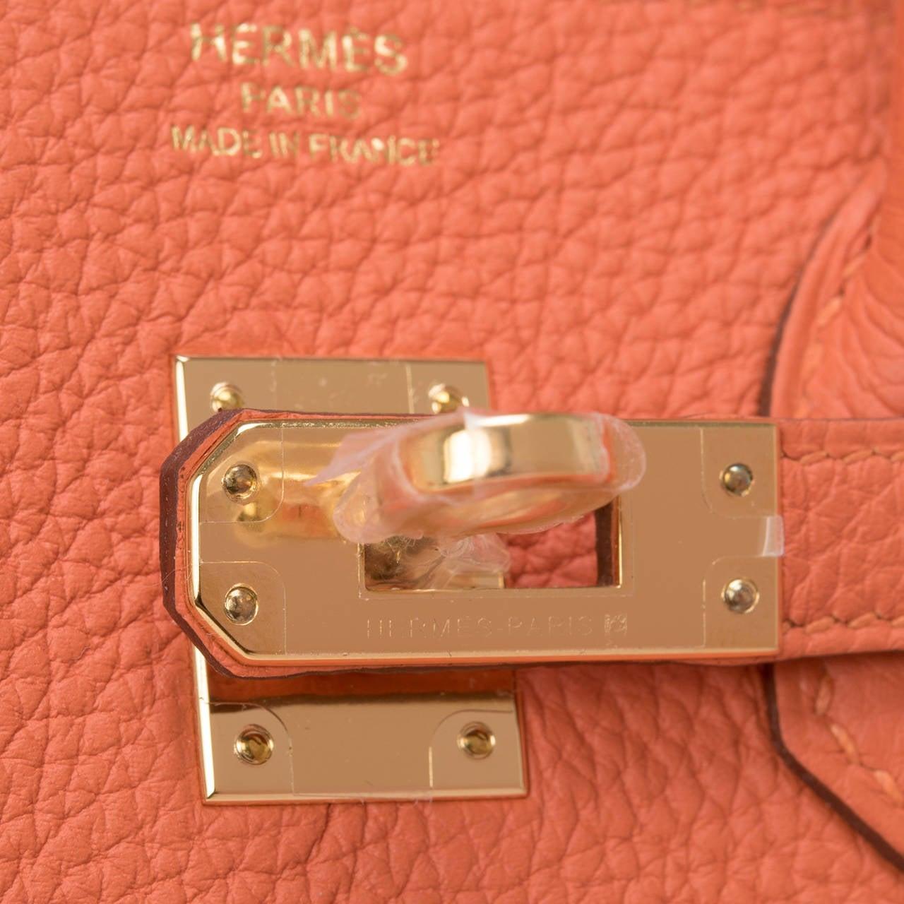 Hermes Feu Togo Birkin 25cm Gold Hardware For Sale 1