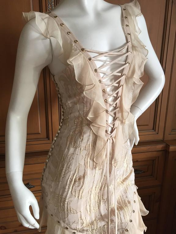 Christian Dior by John Galliano Romantic Gold Silk Corset Lace Dress  6