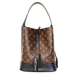 Louis Vuiiton NN Limited Edition Monogram Idole GM satchel