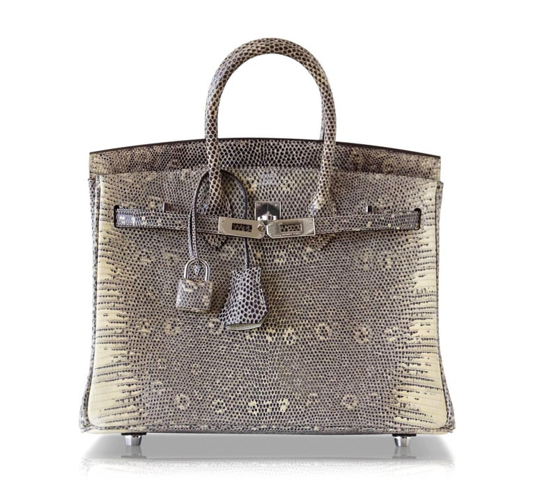 Hermes Ombre Lizard Palladium Hardware Birkin 25 Bag  For Sale 1