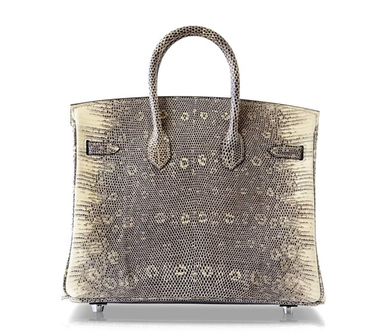 Hermes Ombre Lizard Palladium Hardware Birkin 25 Bag  For Sale 2