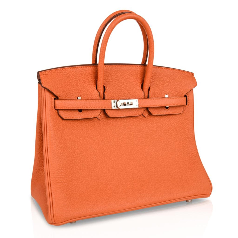 Hermes Birkin 25 Bag Iconic Rare H Orange Treasure Togo Palladium Rare For  Sale at 1stdibs a6968a034403