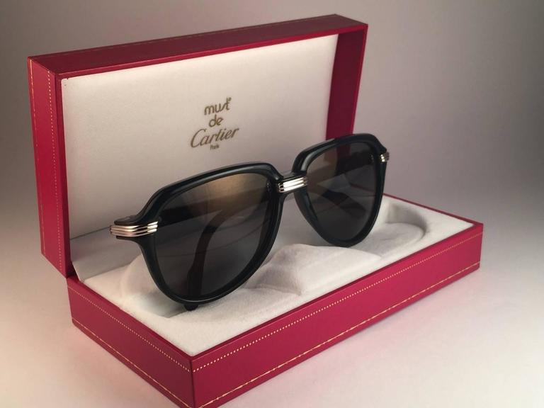 Gray New Cartier Vitesse Green Jade Platinum 58MM Platinum Sunglasses France  For Sale