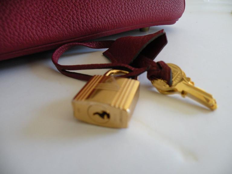 Hermes Birkin Bag 25cm Rouge Grenat Red Togo Gold Hardware 8