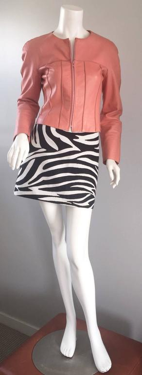 Brand New Celine by Phoebe Philo Black and White Zebra Print A - Line Mini Skirt 3